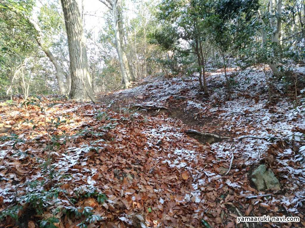 黒岩尾根の登り道